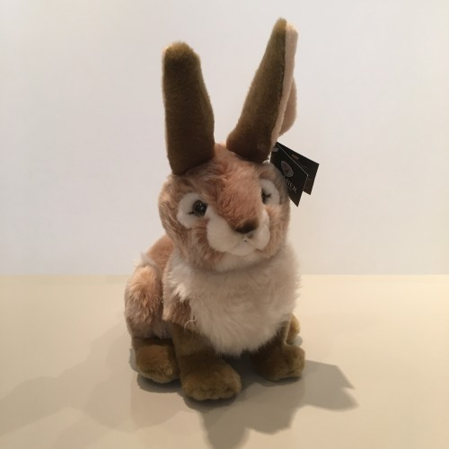 Sitting Beige Rabbit Image